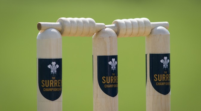cricket Surrey Championship stumps photo