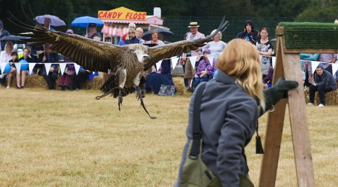 PHOTOS: Outwood Village Country Show
