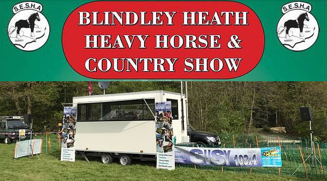 Blindley Heath Heavy Horse & Country Show