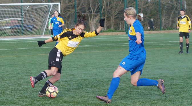 Crawley Wasps LFC In Sussex Women's Challenge Cup Final