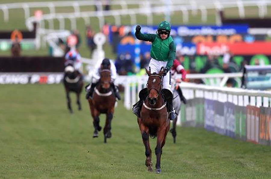 Jockey celebrates victory at end of  hurdle race